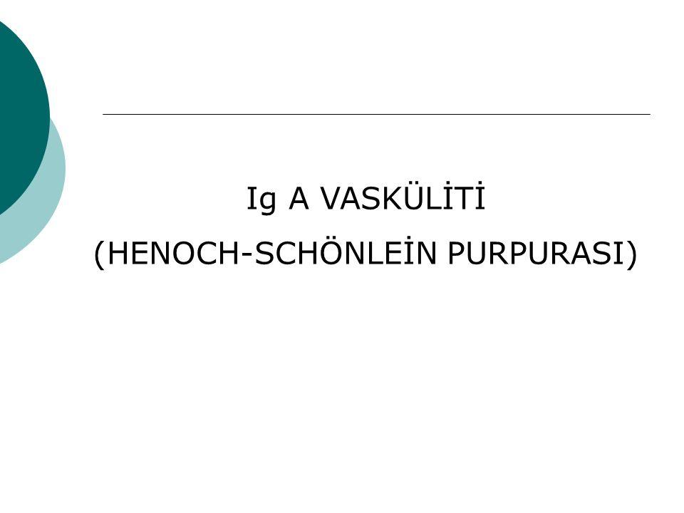 (HENOCH-SCHÖNLEİN PURPURASI)