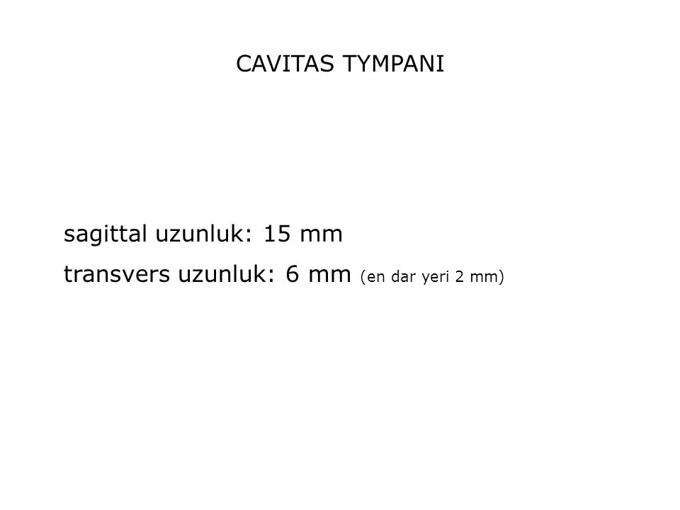 CAVITAS TYMPANI sagittal uzunluk: 15 mm transvers uzunluk: 6 mm (en dar yeri 2 mm)