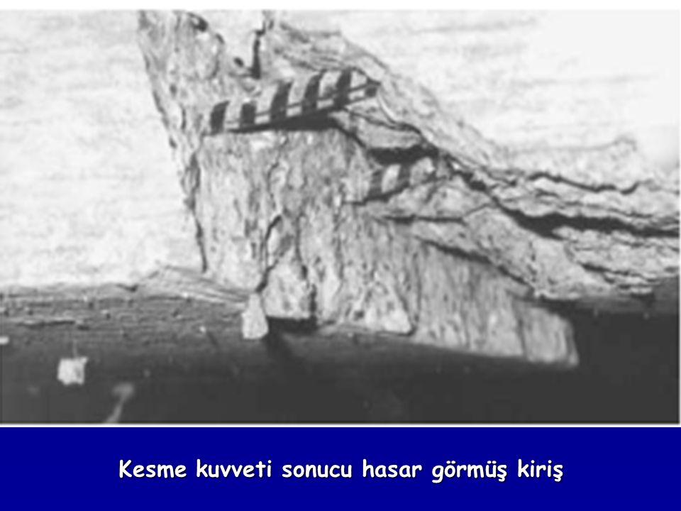 Kesme kuvveti sonucu hasar görmüş kiriş