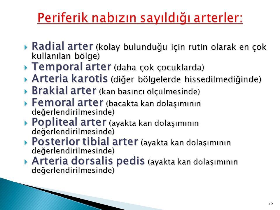 Periferik nabızın sayıldığı arterler: