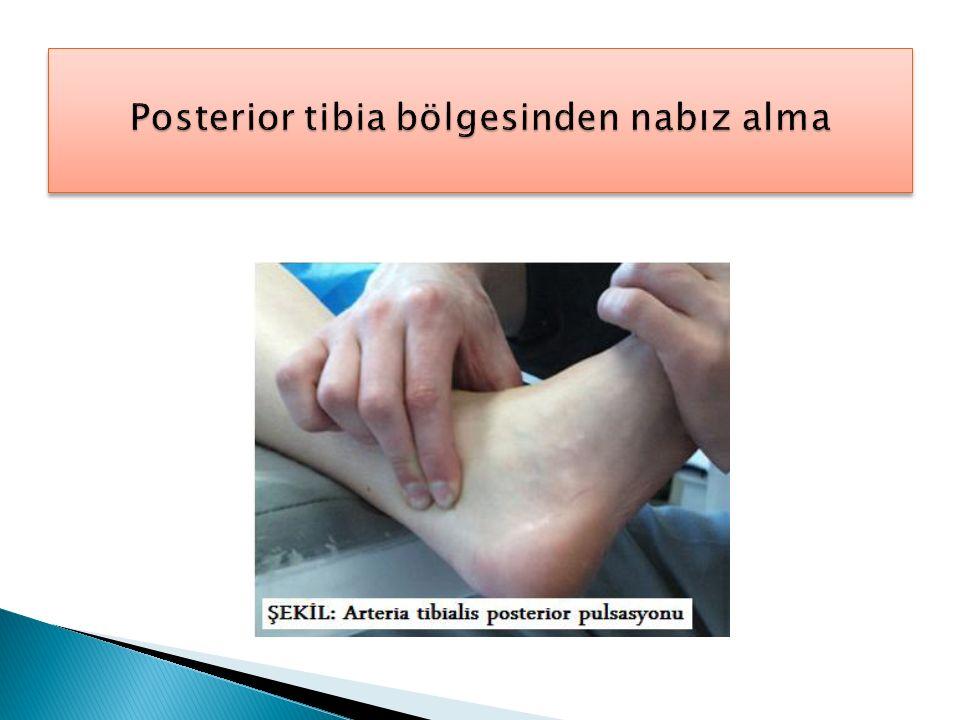 Posterior tibia bölgesinden nabız alma