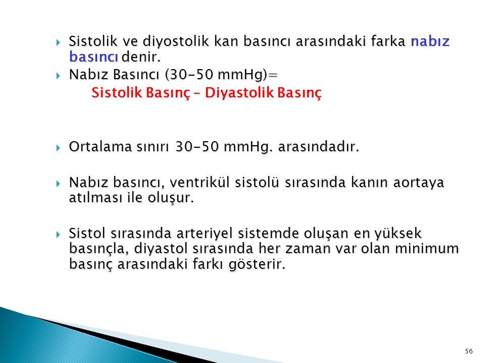 Sistolik ve diyostolik kan basıncı arasındaki farka nabız basıncı denir.