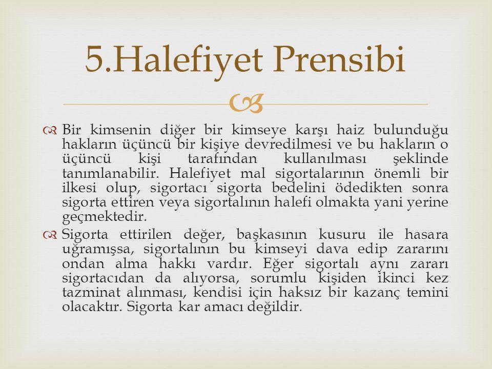 5.Halefiyet Prensibi