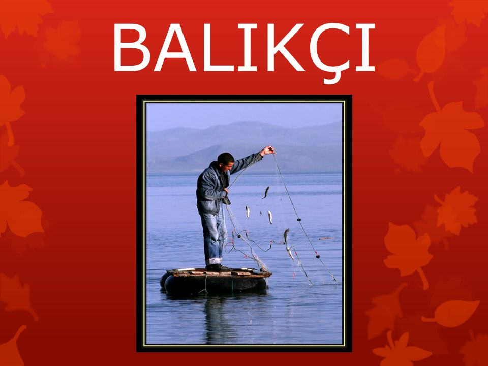 BALIKÇI