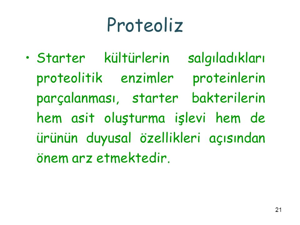 Proteoliz