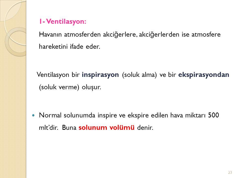 1- Ventilasyon: Havanın atmosferden akciğerlere, akciğerlerden ise atmosfere hareketini ifade eder.