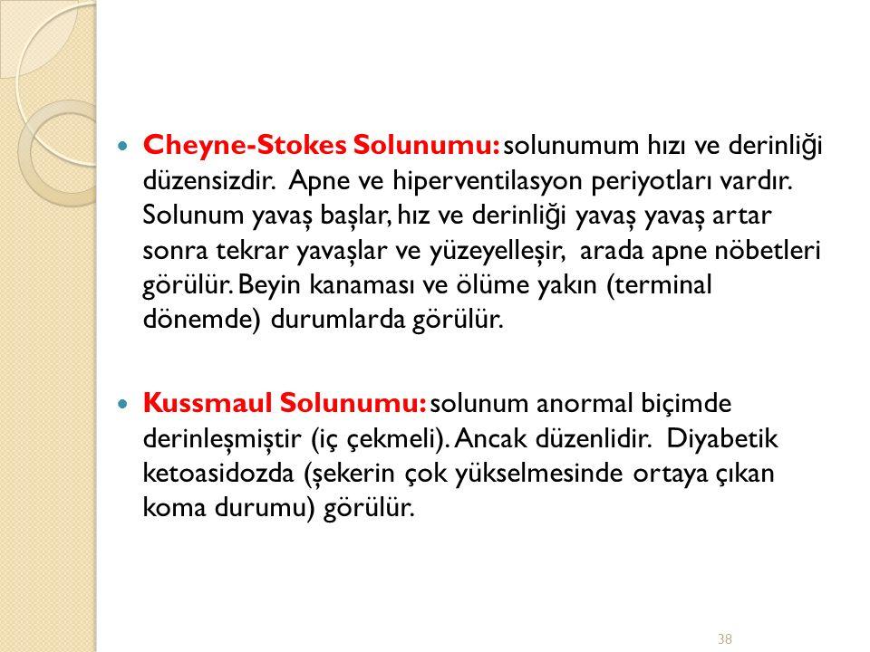 Cheyne-Stokes Solunumu: solunumum hızı ve derinliği düzensizdir