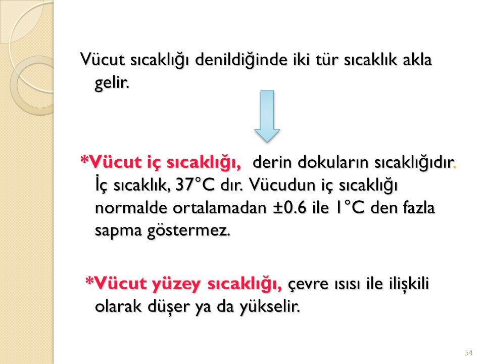 Vücut sıcaklığı denildiğinde iki tür sıcaklık akla gelir