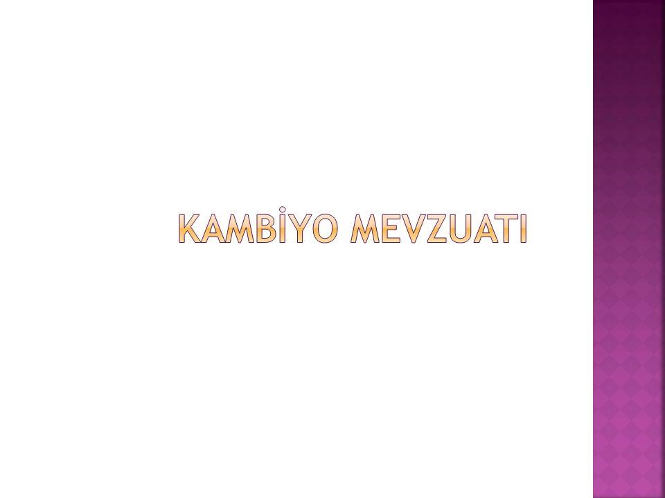 KAMBİYO MEVZUATI