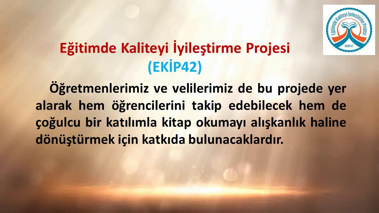 Eğitimde Kaliteyi İyileştirme Projesi (EKİP42)