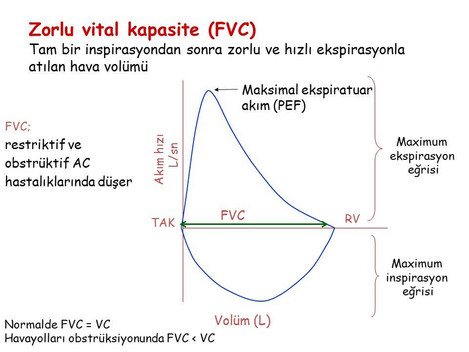 Zorlu vital kapasite (FVC) Tam bir inspirasyondan sonra zorlu ve hızlı ekspirasyonla atılan hava volümü
