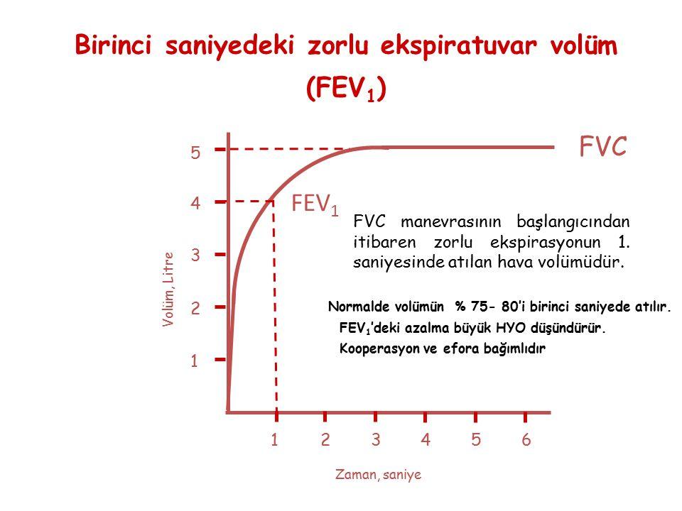 Birinci saniyedeki zorlu ekspiratuvar volüm (FEV1)