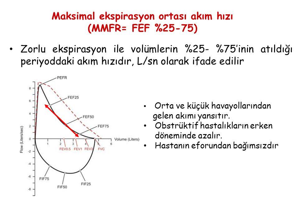 Maksimal ekspirasyon ortası akım hızı
