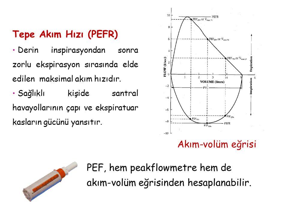 Tepe Akım Hızı (PEFR) Akım-volüm eğrisi