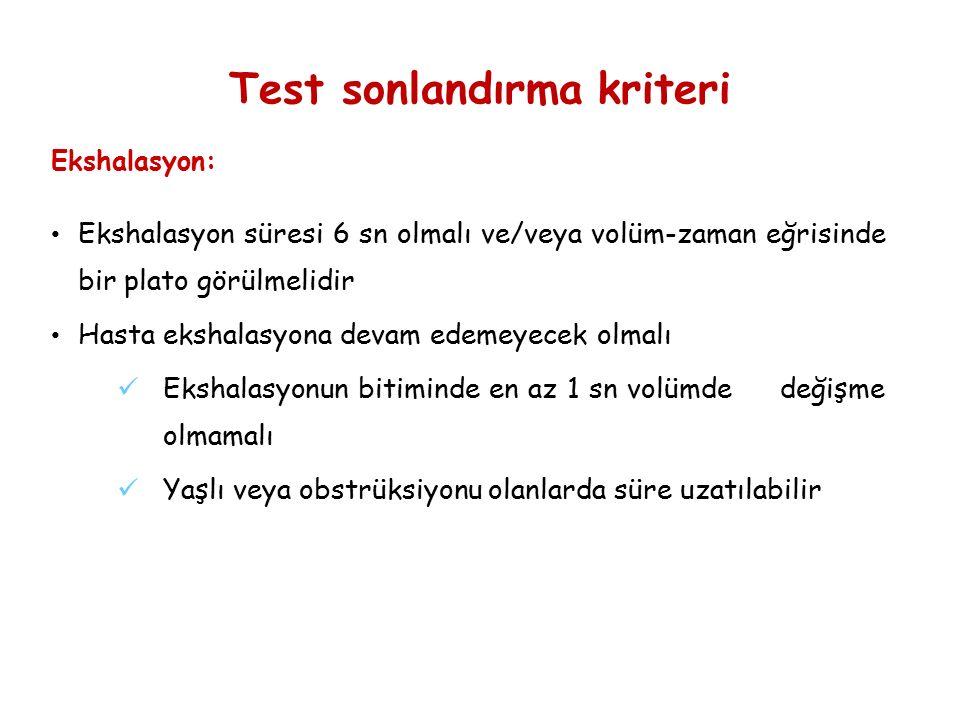 Test sonlandırma kriteri