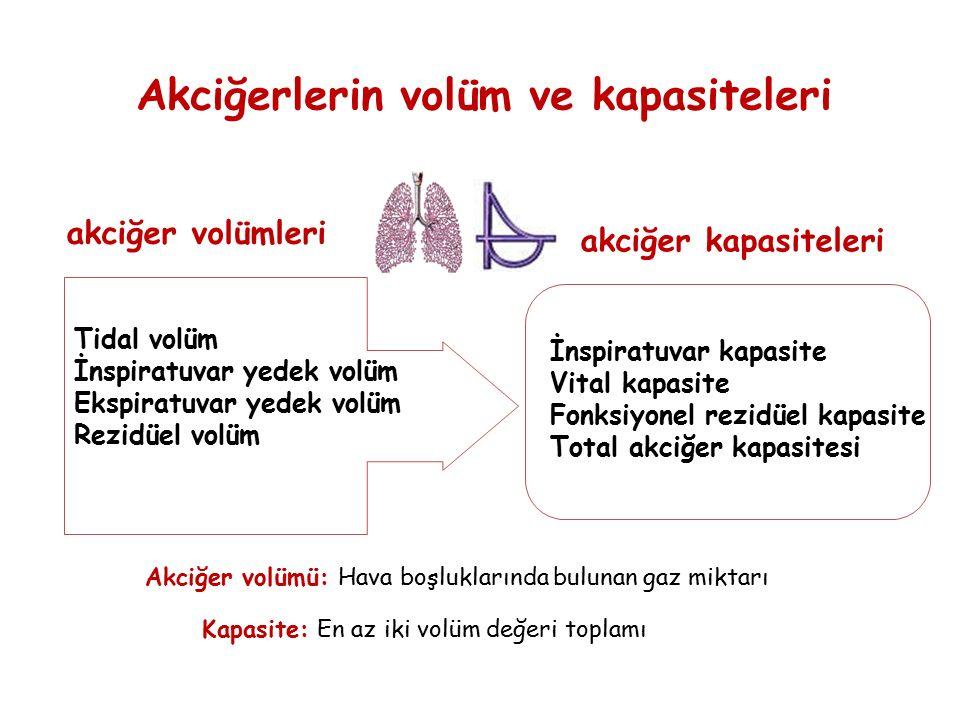 Akciğerlerin volüm ve kapasiteleri