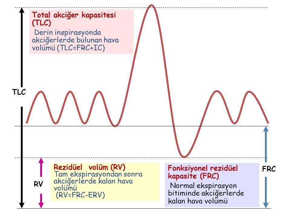 Total akciğer kapasitesi (TLC)