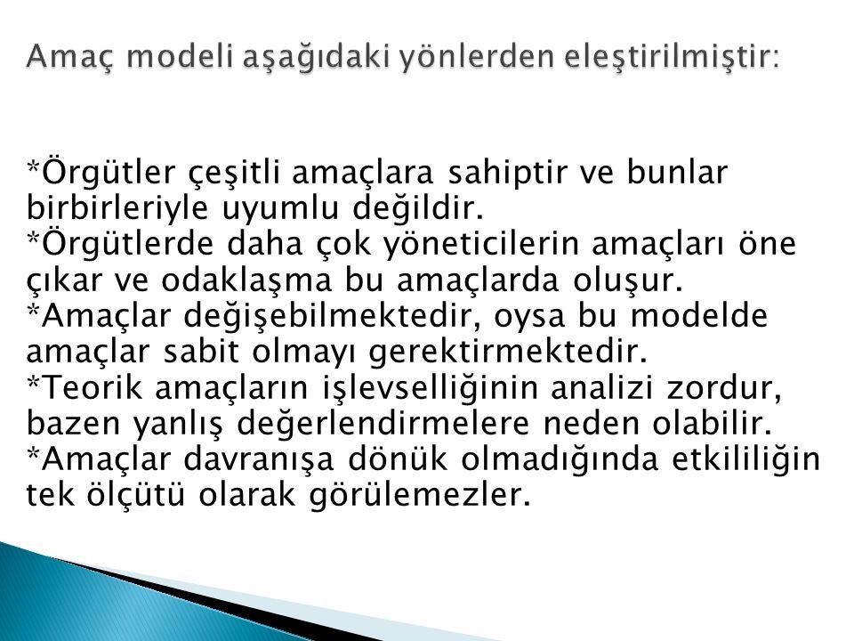 Amaç modeli aşağıdaki yönlerden eleştirilmiştir: