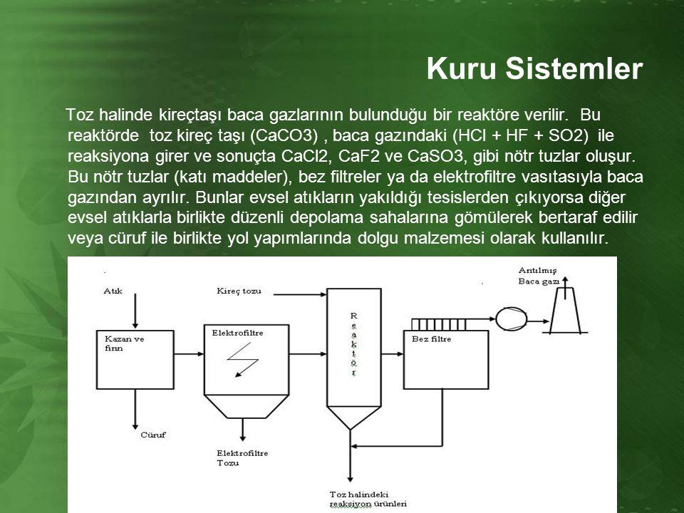 Kuru Sistemler