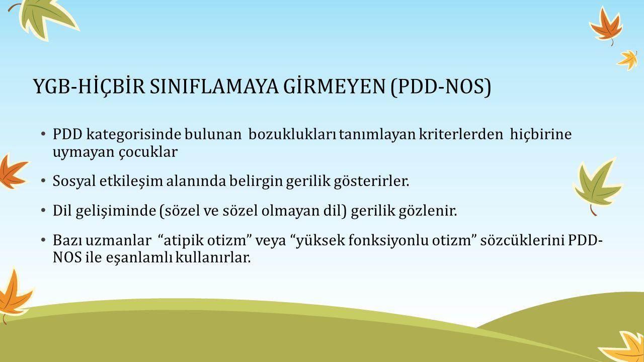 YGB-HİÇBİR SINIFLAMAYA GİRMEYEN (PDD-NOS)