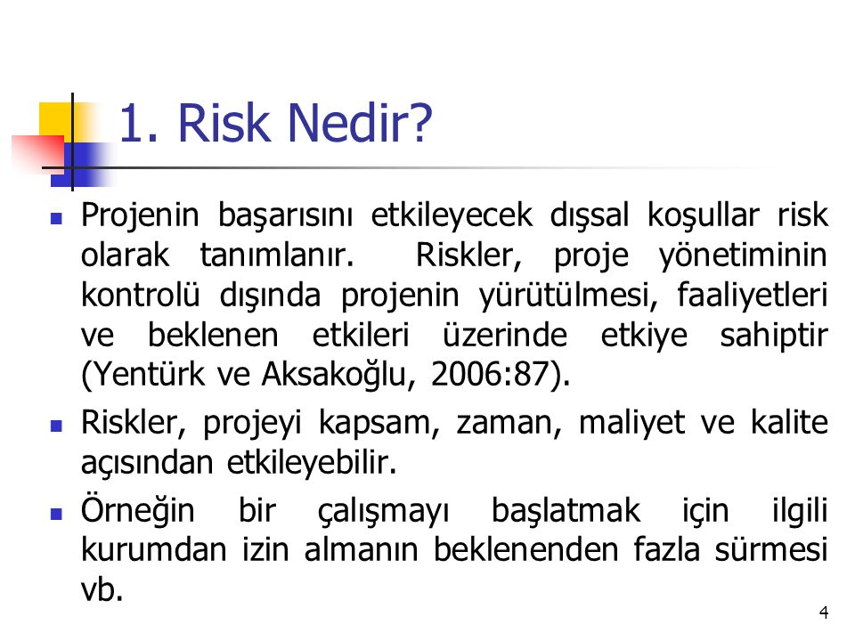 1. Risk Nedir