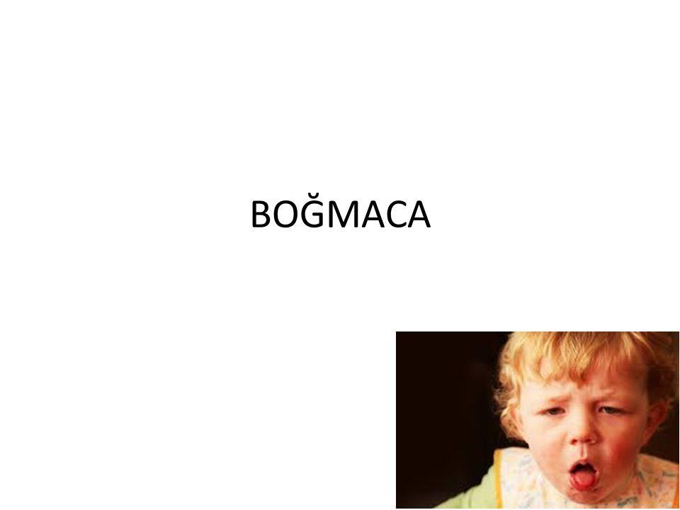 BOĞMACA