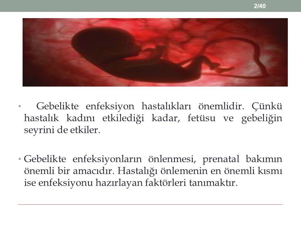 Gebelikte enfeksiyon hastalıkları önemlidir