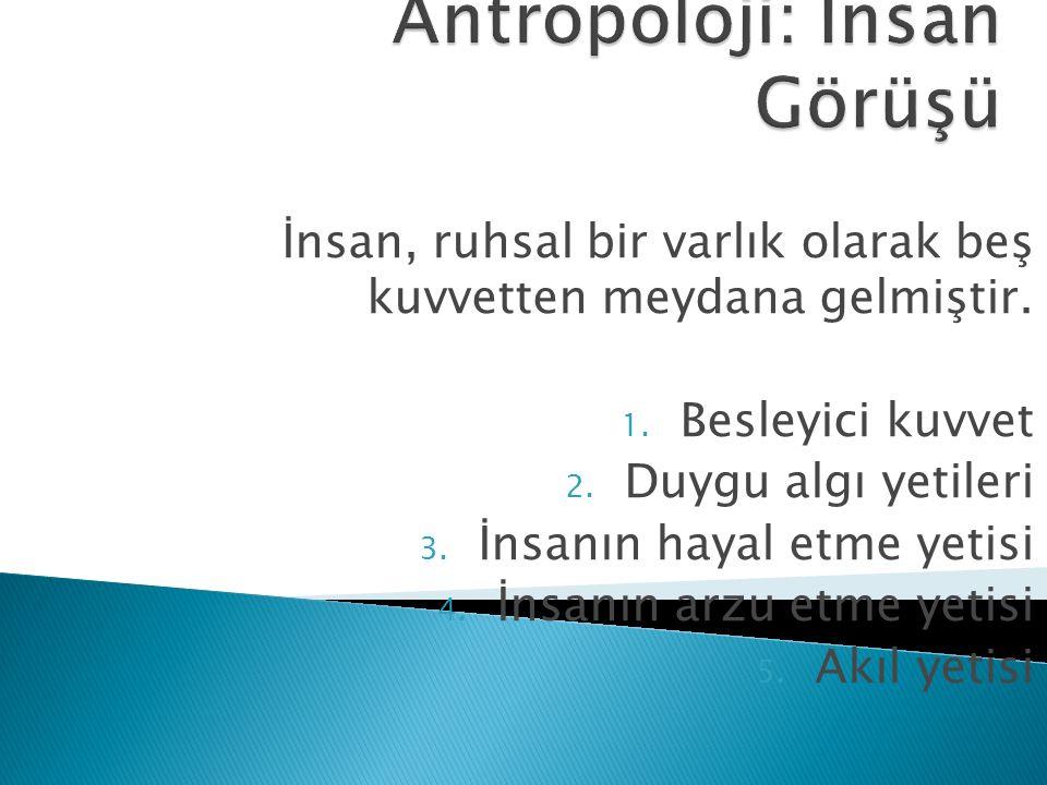 Antropoloji: İnsan Görüşü