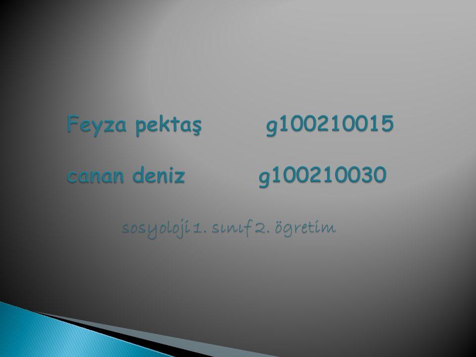 Feyza pektaş g100210015 canan deniz g100210030 sosyoloji 1. sınıf 2