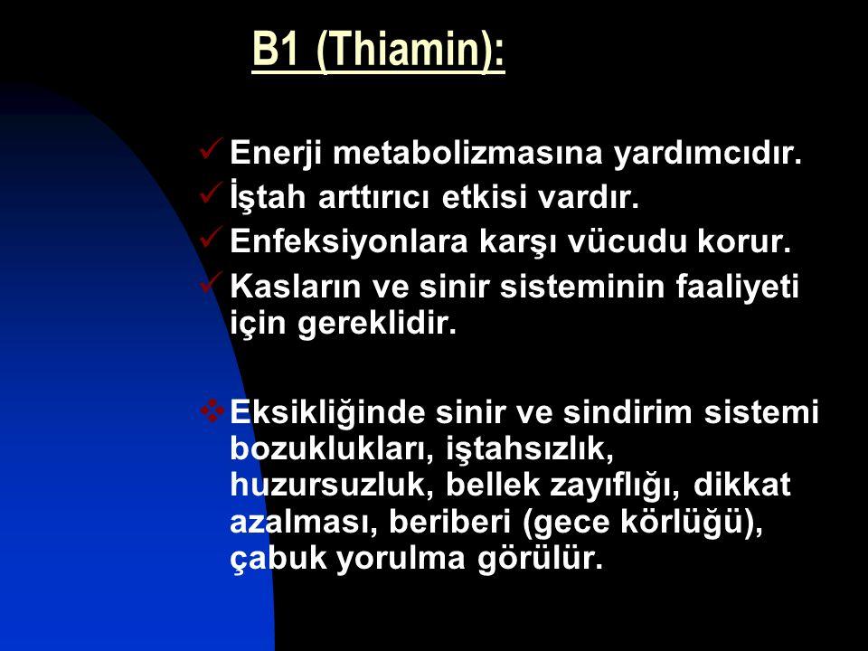 B1 (Thiamin): Enerji metabolizmasına yardımcıdır.