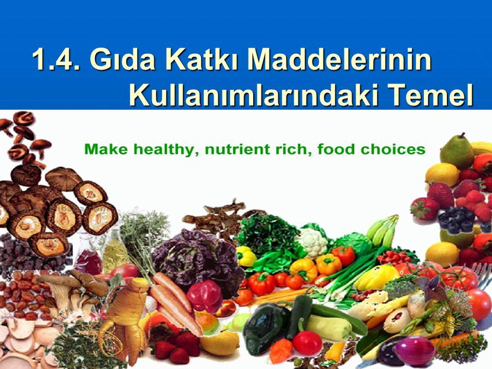 1.4. Gıda Katkı Maddelerinin Kullanımlarındaki Temel İlkeler