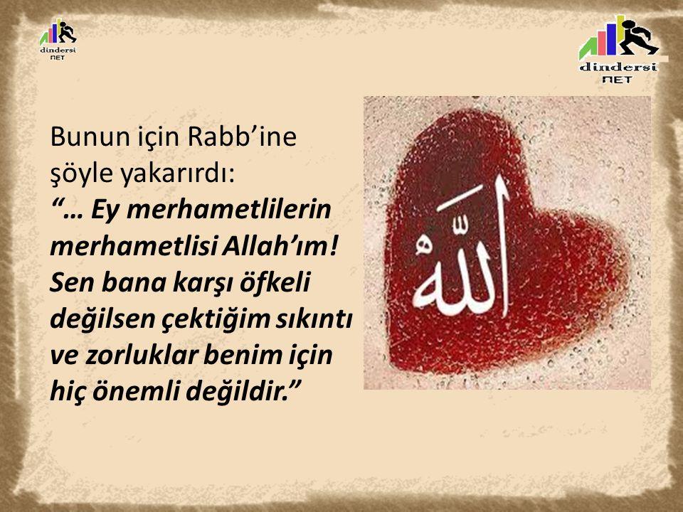 Bunun için Rabb'ine şöyle yakarırdı: … Ey merhametlilerin merhametlisi Allah'ım.