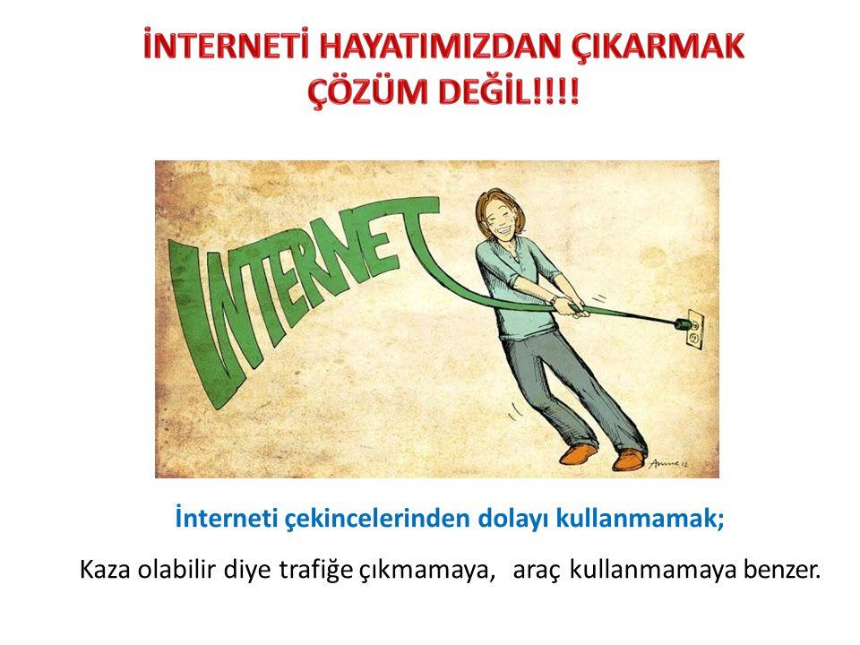 İnterneti çekincelerinden dolayı kullanmamak;