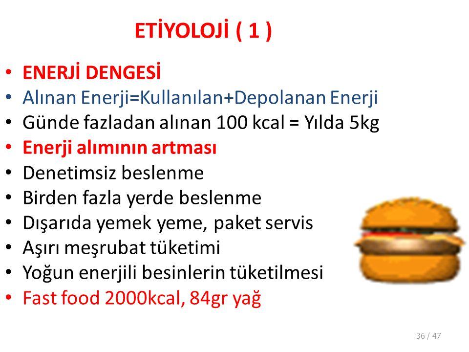 ETİYOLOJİ ( 1 ) ENERJİ DENGESİ
