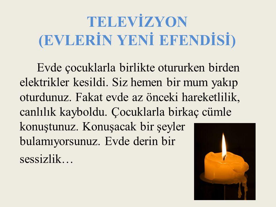 TELEVİZYON (EVLERİN YENİ EFENDİSİ)