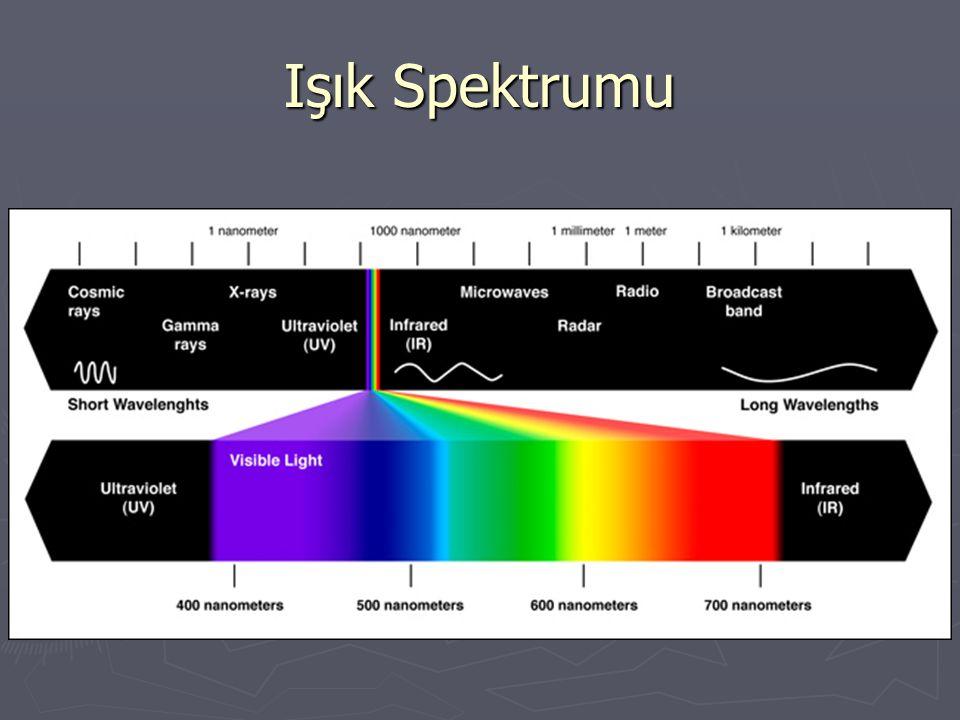 Işık Spektrumu
