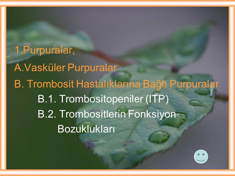 1.Purpuralar, A.Vasküler Purpuralar. B. Trombosit Hastalıklarına Bağlı Purpuralar. B.1. Trombositopeniler (ITP)