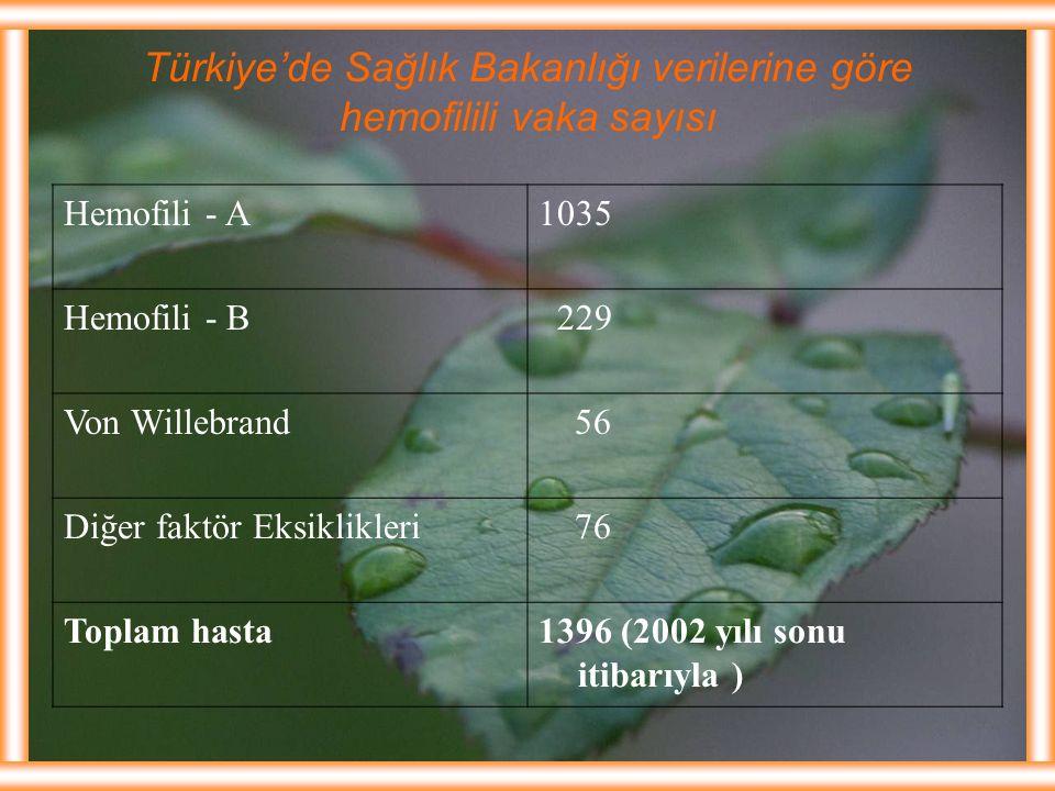 Türkiye'de Sağlık Bakanlığı verilerine göre hemofilili vaka sayısı