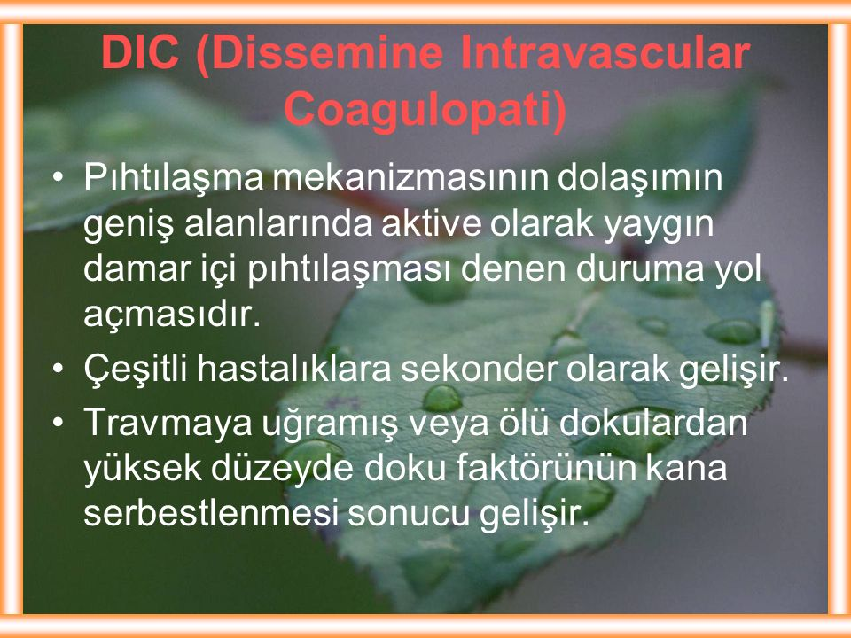 DIC (Dissemine Intravascular Coagulopati)