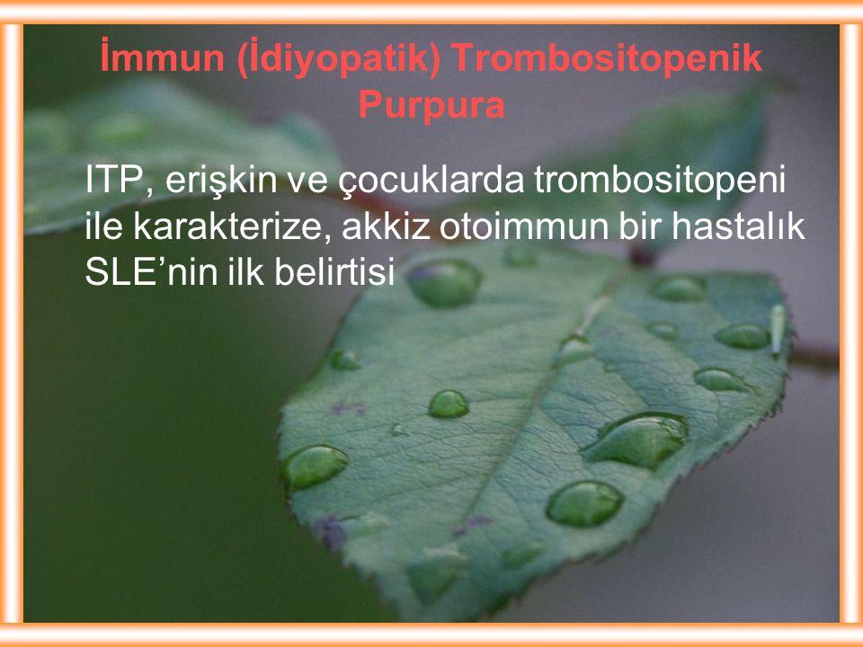 İmmun (İdiyopatik) Trombositopenik Purpura