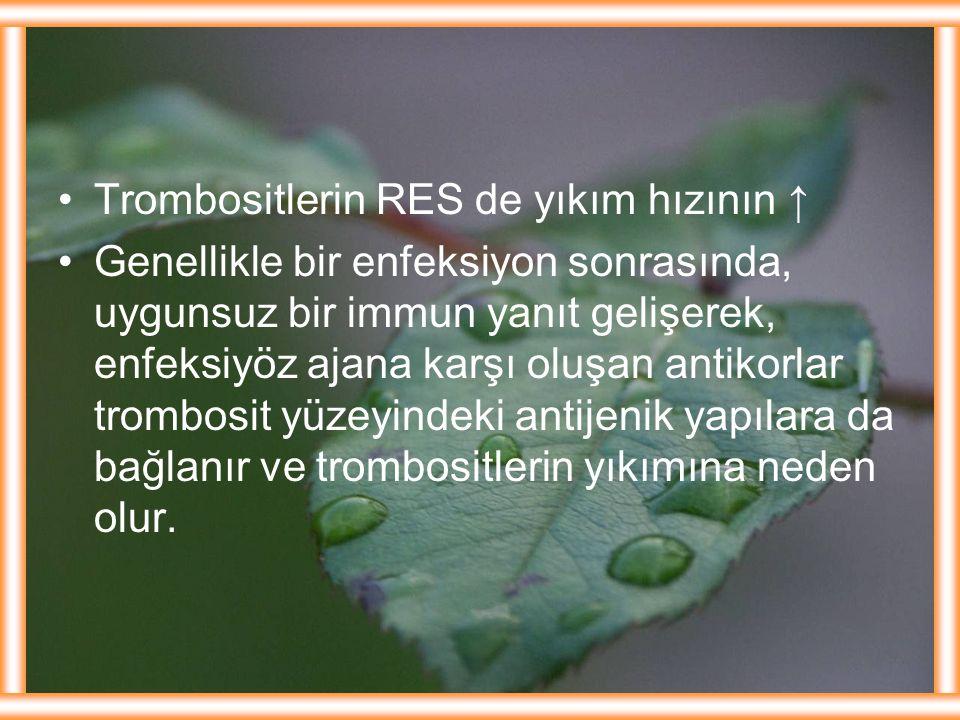 Trombositlerin RES de yıkım hızının ↑