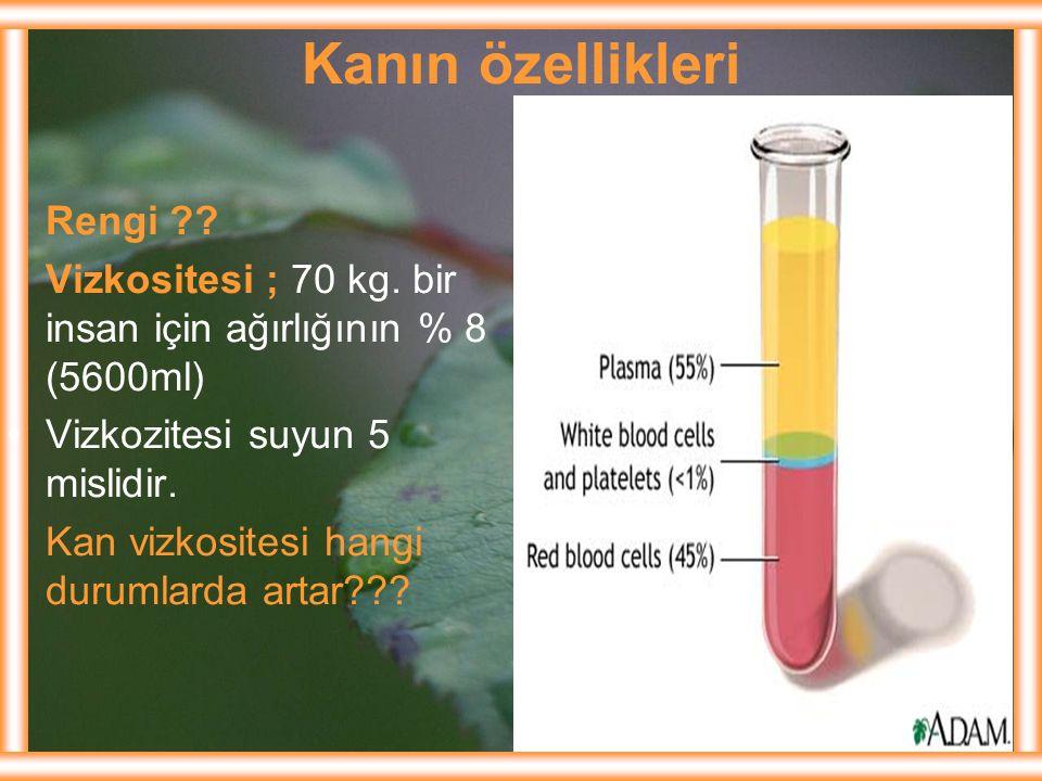 Kanın özellikleri Rengi
