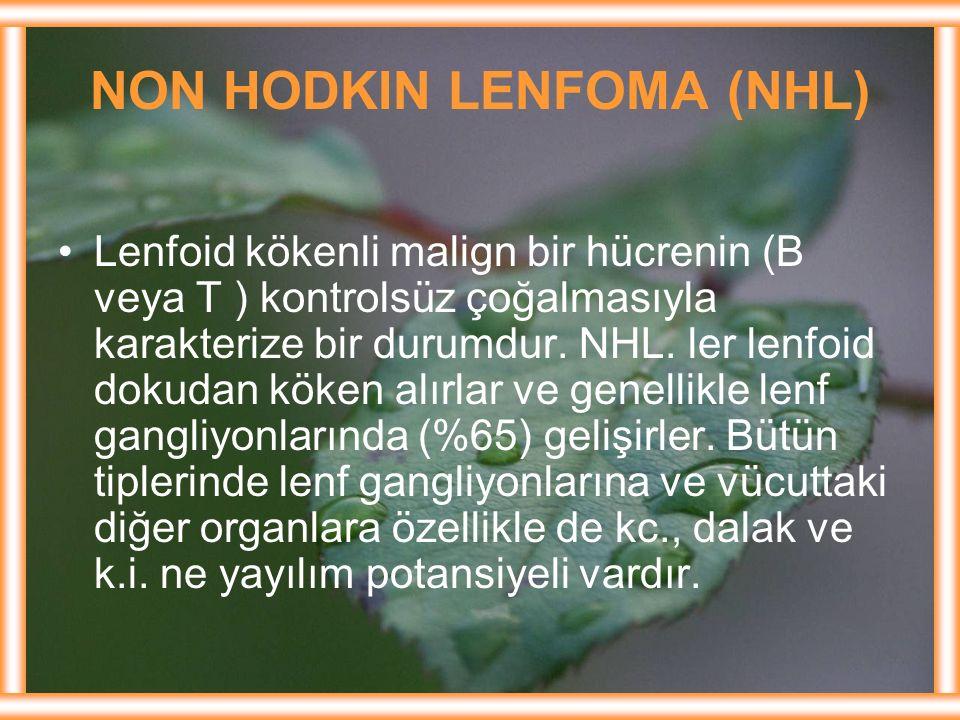 NON HODKIN LENFOMA (NHL)