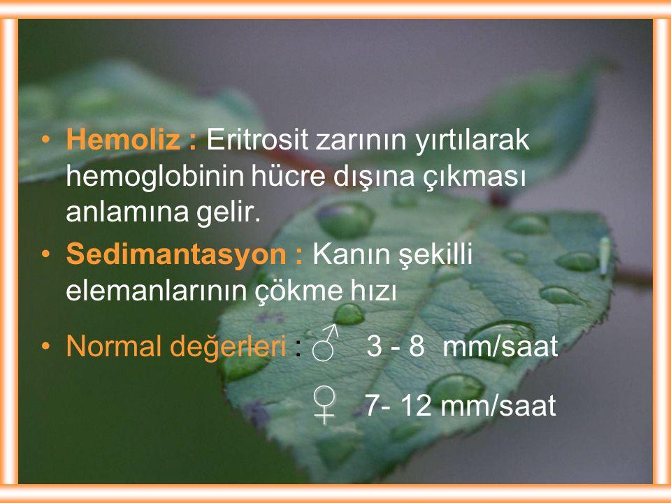 Hemoliz : Eritrosit zarının yırtılarak hemoglobinin hücre dışına çıkması anlamına gelir.