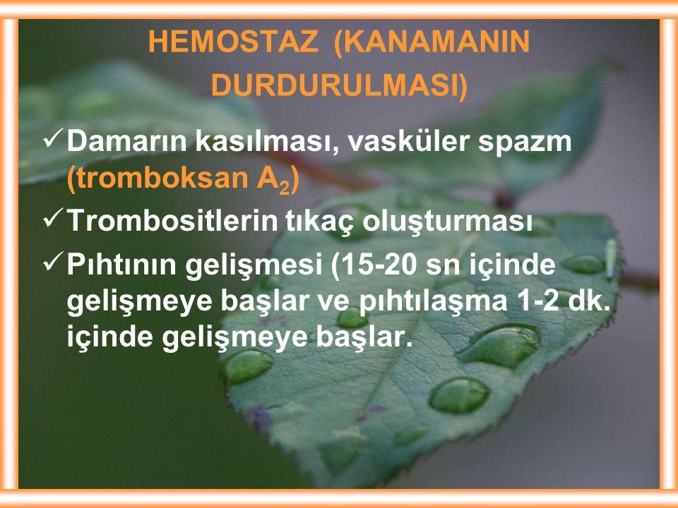 HEMOSTAZ (KANAMANIN DURDURULMASI)