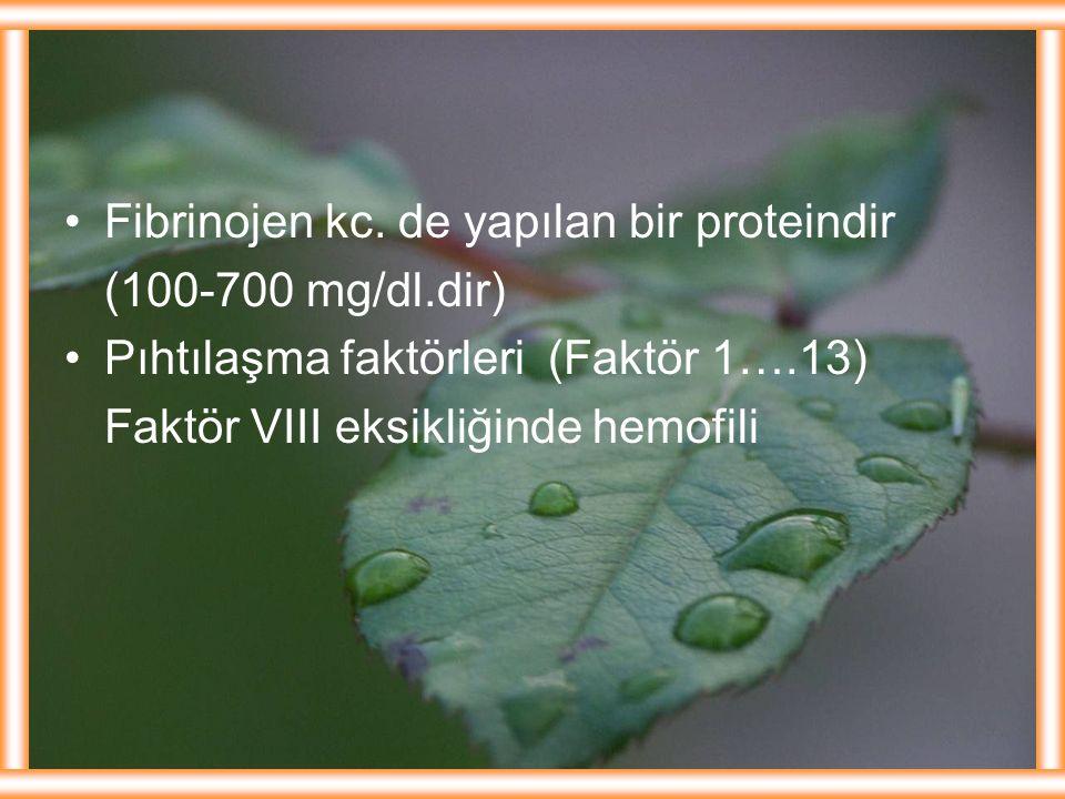 Fibrinojen kc. de yapılan bir proteindir