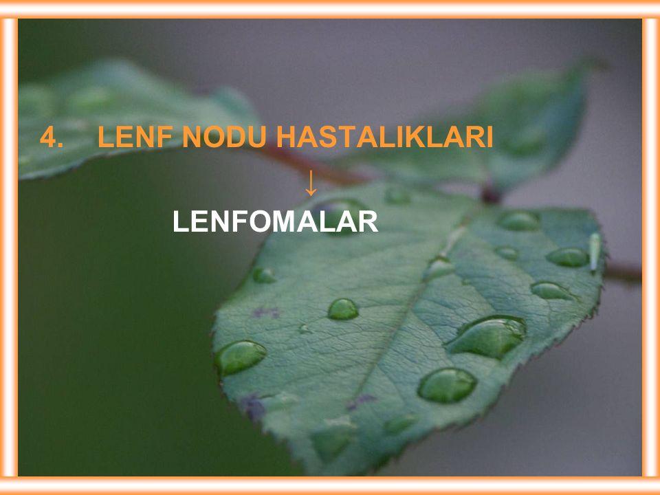 4. LENF NODU HASTALIKLARI