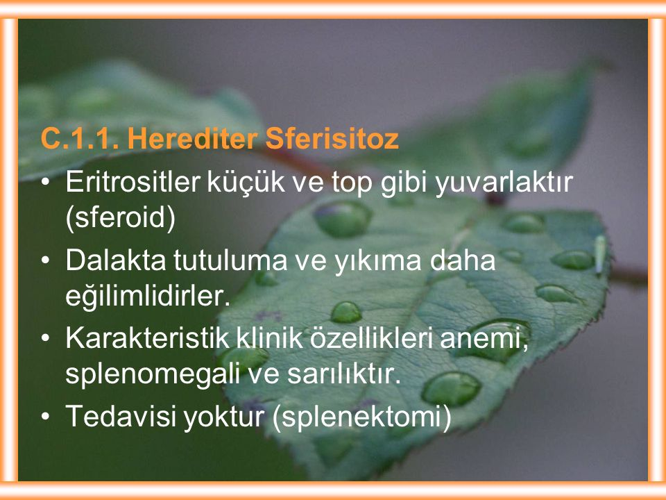 C.1.1. Herediter Sferisitoz