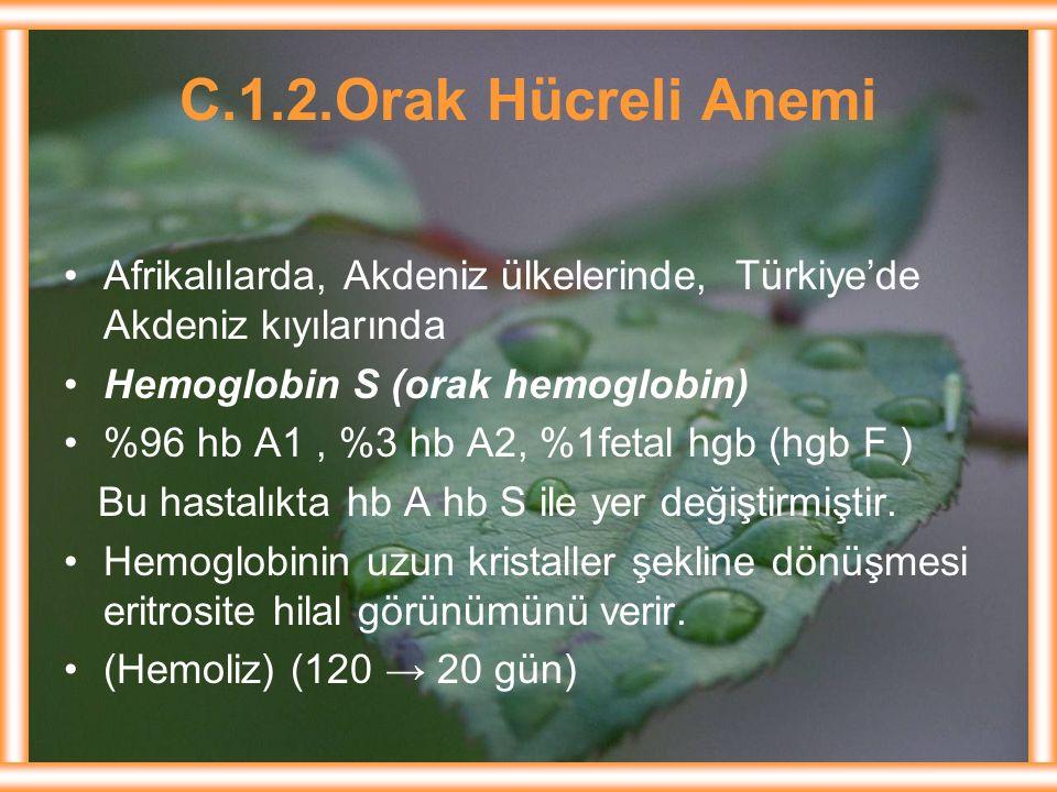 C.1.2.Orak Hücreli Anemi Afrikalılarda, Akdeniz ülkelerinde, Türkiye'de Akdeniz kıyılarında. Hemoglobin S (orak hemoglobin)