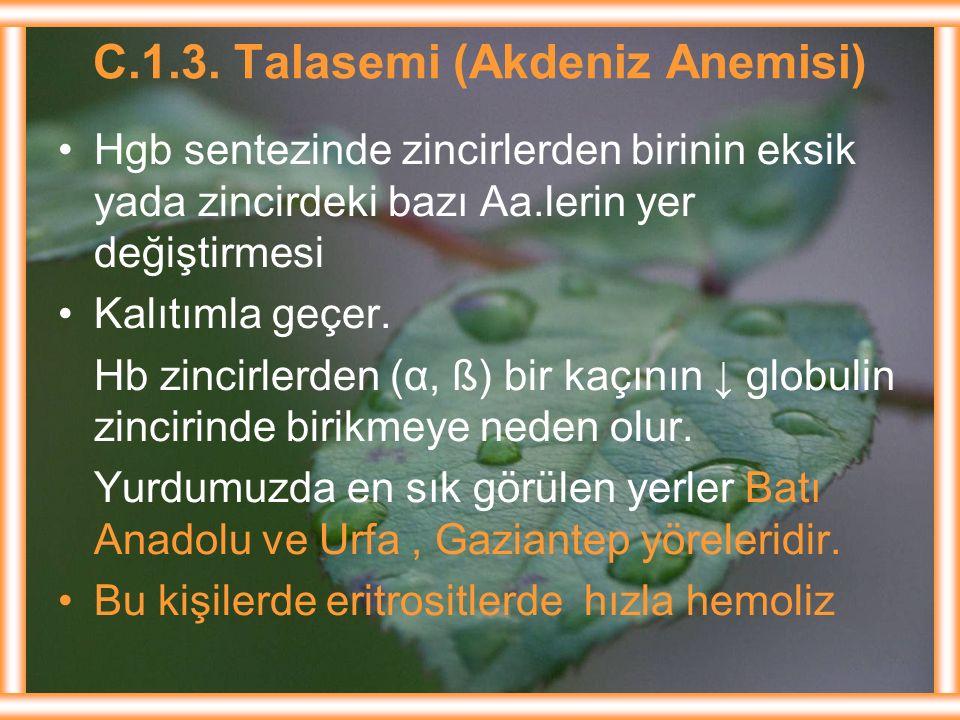 C.1.3. Talasemi (Akdeniz Anemisi)